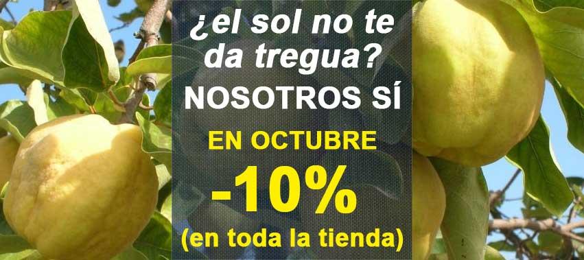 Promocion descuento 10 por ciento Octubre